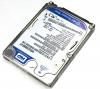 Toshiba U305 Silver Hard Drive (250 GB)