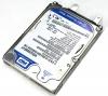 Toshiba U305 Silver Hard Drive (120 GB)